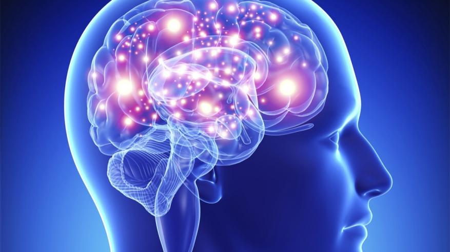 تعرف على العادات السبعة  لتحسين عمل العقل