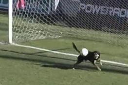 شاهد بالفيديو.. الكلب الذي منع هدفا في دوري الأرجنتين