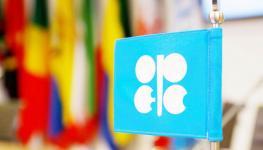 صورة النفط.jpg