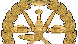 سلاح الجو السلطاني.png