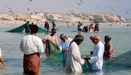 الزراعة تحذر الصيادين.jpg