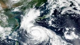 اليابان إعصار (3).jpg