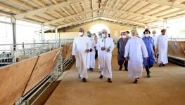 وزير الزراعة زيارة تفقدية (4).jpg