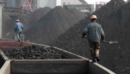 فحم الصين.jpg