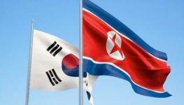 الكوريتان.jpg