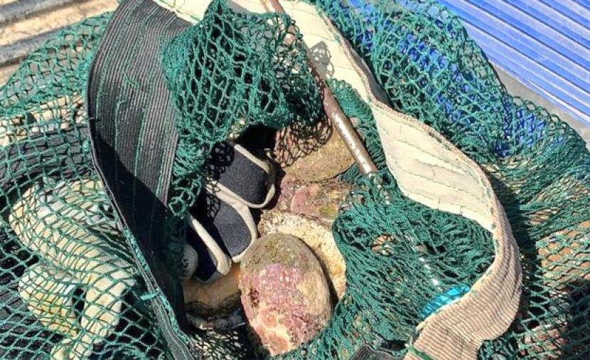 الزراعة تضبط صيادين مخالفين في ظفار
