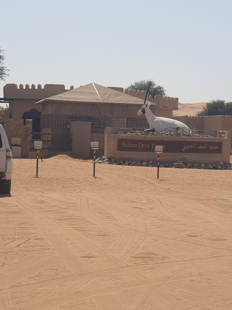 مخيم المها العربي.jpg