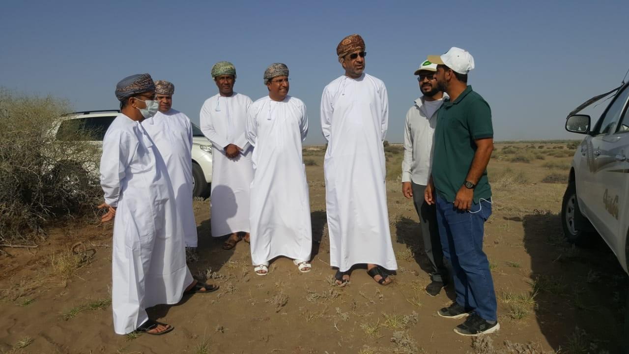 وزير الزراعة الجراد الصحراوي  (2).jpg