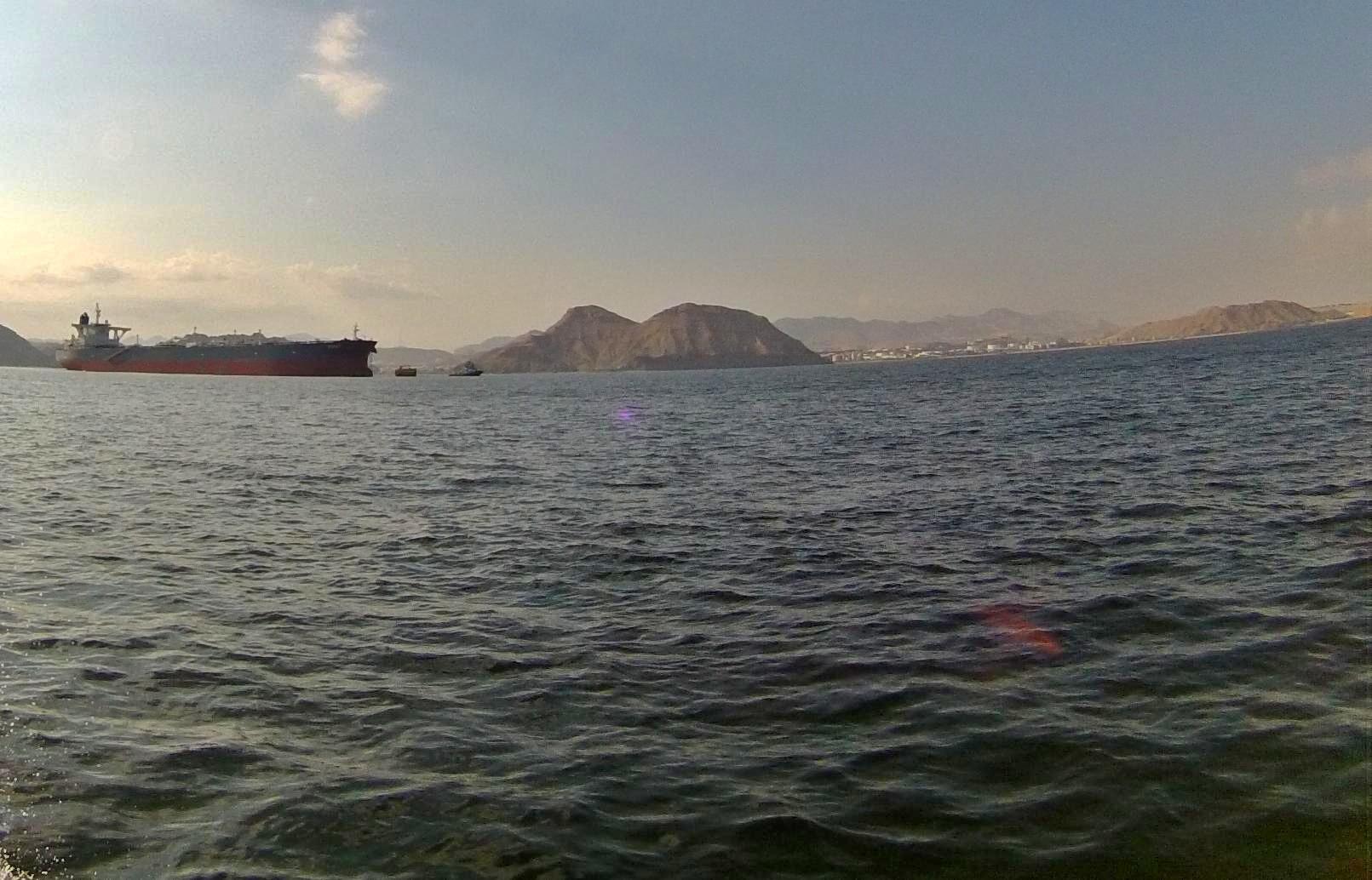 ميناء الفحل 2.jpg